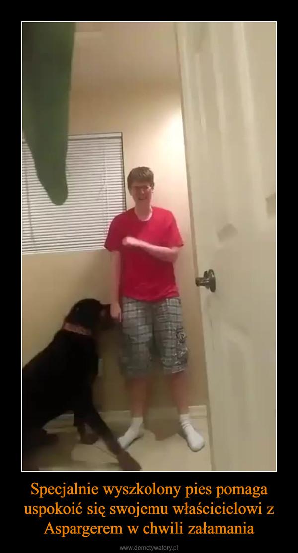 Specjalnie wyszkolony pies pomaga uspokoić się swojemu właścicielowi z Aspargerem w chwili załamania –