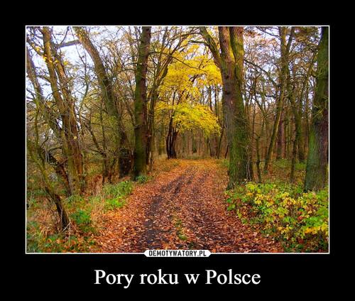 Pory roku w Polsce