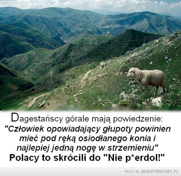 Słowa ponadczasowe –  Dagestańscy górale mają powiedzenie: Człowiek opowiadający głupoty powinien mieć pod ręką osiodłanego konia i najlepiej jedną nogę w strzemieniu. Polacy to skrócili do nie piedol!