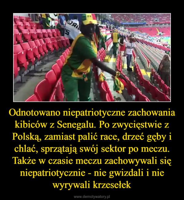 Odnotowano niepatriotyczne zachowania kibiców z Senegalu. Po zwycięstwie z Polską, zamiast palić race, drzeć gęby i chlać, sprzątają swój sektor po meczu. Także w czasie meczu zachowywali się niepatriotycznie - nie gwizdali i nie wyrywali krzesełek –