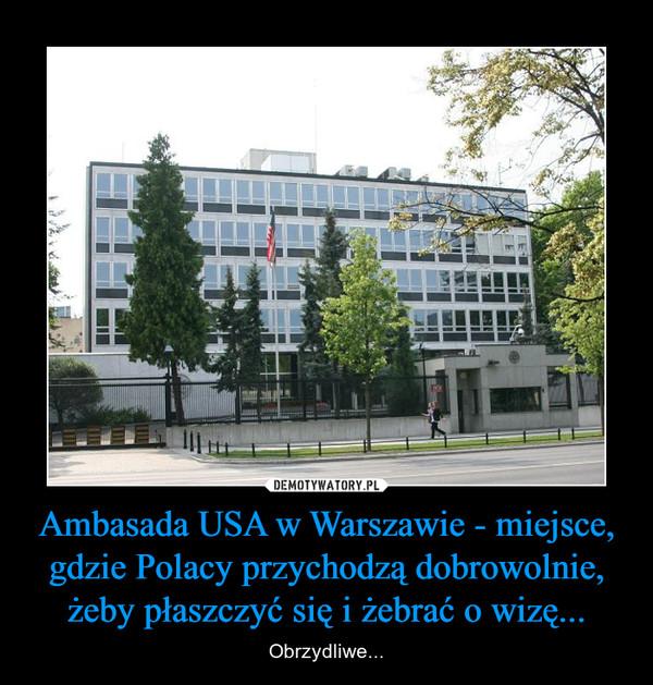 Ambasada USA w Warszawie - miejsce, gdzie Polacy przychodzą dobrowolnie, żeby płaszczyć się i żebrać o wizę... – Obrzydliwe...