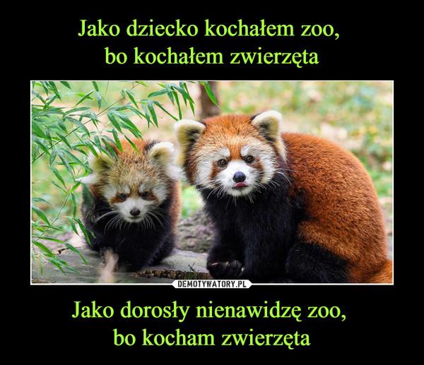 Jako dorosły nienawidzę zoo, bo kocham zwierzęta –