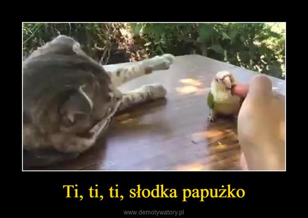 Ti, ti, ti, słodka papużko –