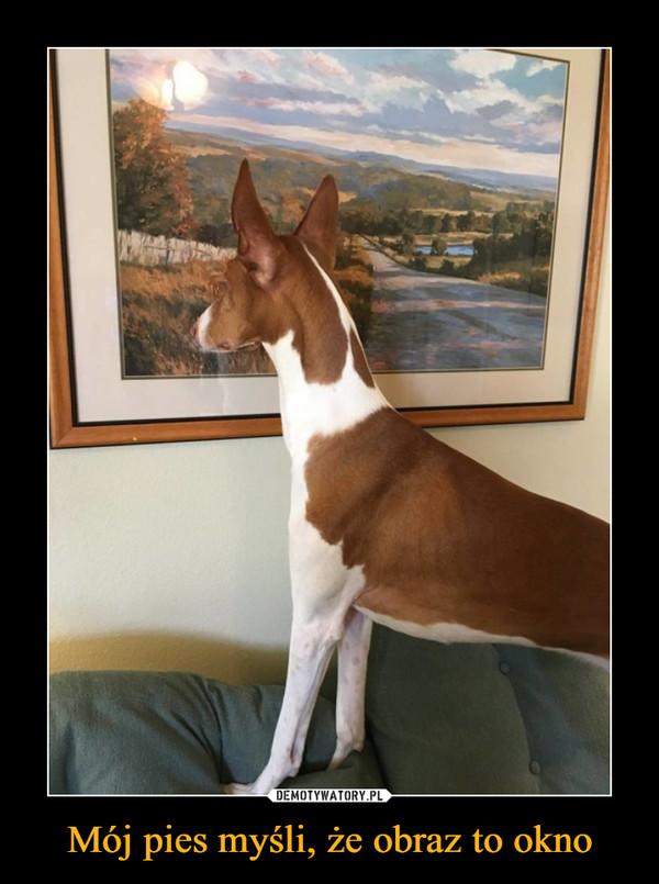 Mój pies myśli, że obraz to okno –
