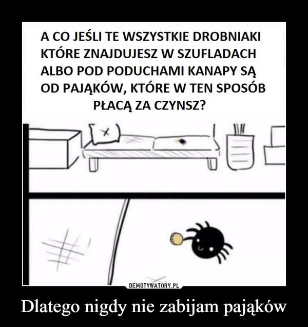 Dlatego nigdy nie zabijam pająków –  A CO JEŚLI TE WSZYSTKIE DROBNIAKI KTÓRE ZNAJDUJESZ W SZUFLADACH ALBO POD PODUCHAMI KANAPY SĄ OD PAJĄKÓW, KTÓRE W TEN SPOSÓB PŁACĄ ZA CZYNSZ?