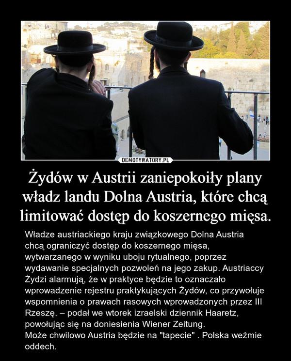 """Żydów w Austrii zaniepokoiły plany władz landu Dolna Austria, które chcą limitować dostęp do koszernego mięsa. – Władze austriackiego kraju związkowego Dolna Austria chcą ograniczyć dostęp do koszernego mięsa, wytwarzanego w wyniku uboju rytualnego, poprzez wydawanie specjalnych pozwoleń na jego zakup. Austriaccy Żydzi alarmują, że w praktyce będzie to oznaczało wprowadzenie rejestru praktykujących Żydów, co przywołuje wspomnienia o prawach rasowych wprowadzonych przez III Rzeszę. – podał we wtorek izraelski dziennik Haaretz, powołując się na doniesienia Wiener Zeitung. Może chwilowo Austria będzie na """"tapecie"""" . Polska weźmie oddech."""