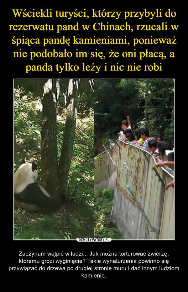 Wściekli turyści, którzy przybyli do rezerwatu pand w Chinach, rzucali w śpiąca pandę kamieniami, ponieważ nie podobało im się, że oni płacą, a panda tylko leży i nic nie robi