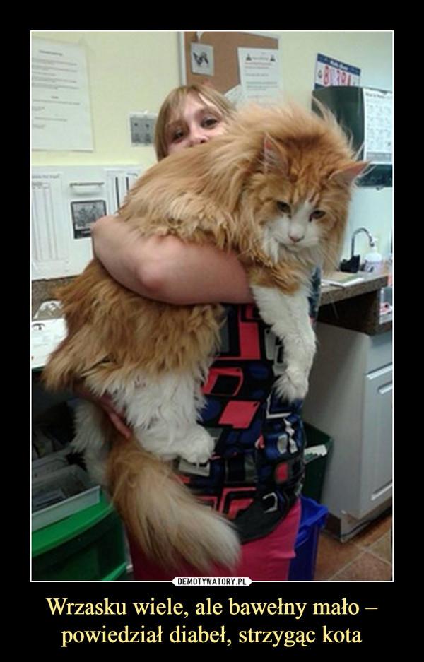 Wrzasku wiele, ale bawełny mało – powiedział diabeł, strzygąc kota –