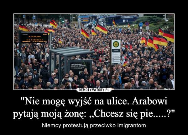 """""""Nie mogę wyjść na ulice. Arabowi pytają moją żonę: """"Chcesz się pie.....?"""" – Niemcy protestują przeciwko imigrantom"""