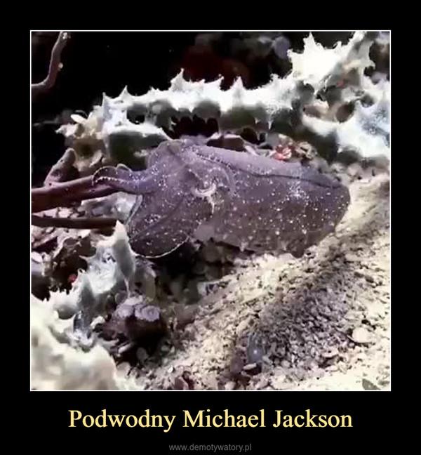 Podwodny Michael Jackson –