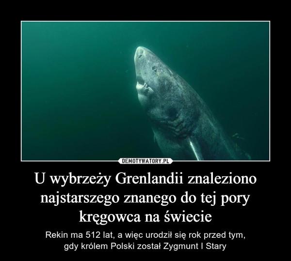 U wybrzeży Grenlandii znaleziono najstarszego znanego do tej pory kręgowca na świecie – Rekin ma 512 lat, a więc urodził się rok przed tym,gdy królem Polski został Zygmunt I Stary