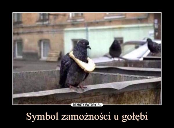 Symbol zamożności u gołębi –