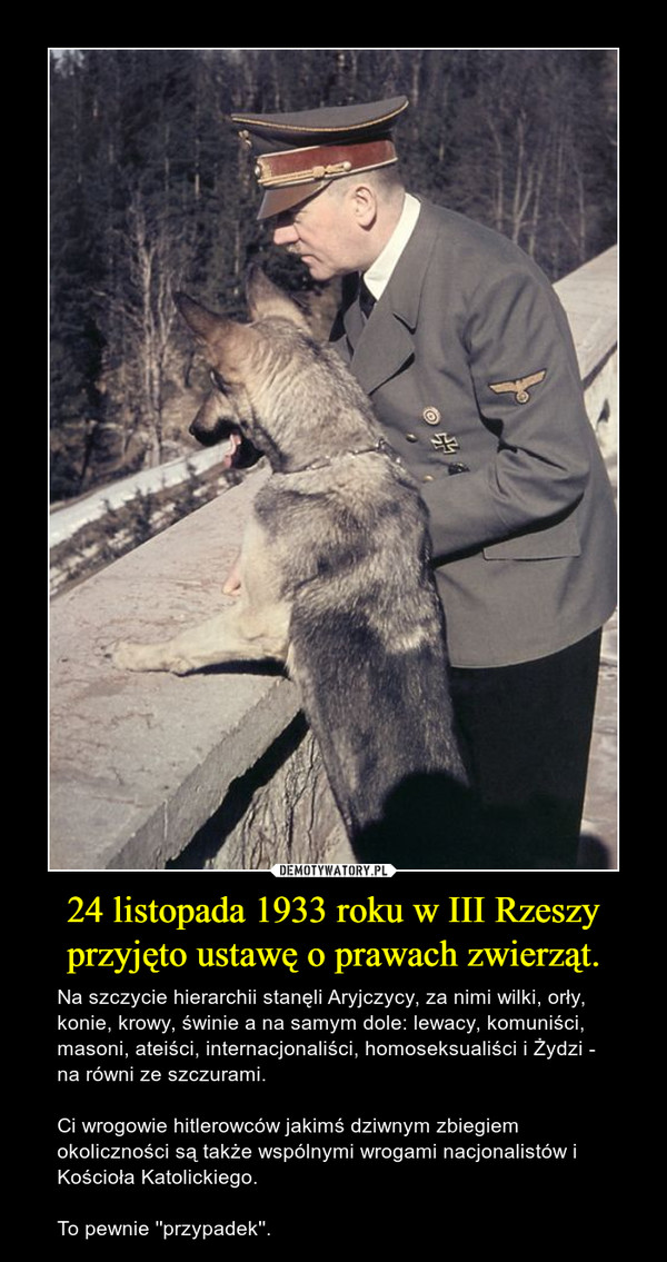 24 listopada 1933 roku w III Rzeszy przyjęto ustawę o prawach zwierząt. – Na szczycie hierarchii stanęli Aryjczycy, za nimi wilki, orły, konie, krowy, świnie a na samym dole: lewacy, komuniści, masoni, ateiści, internacjonaliści, homoseksualiści i Żydzi - na równi ze szczurami. Ci wrogowie hitlerowców jakimś dziwnym zbiegiem okoliczności są także wspólnymi wrogami nacjonalistów i Kościoła Katolickiego.To pewnie ''przypadek''.