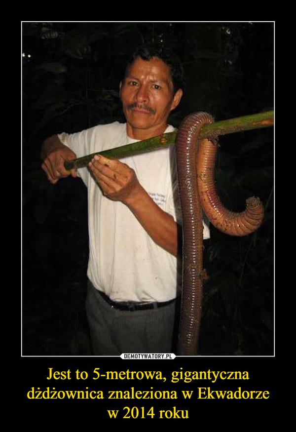 Jest to 5-metrowa, gigantyczna dżdżownica znaleziona w Ekwadorzew 2014 roku –