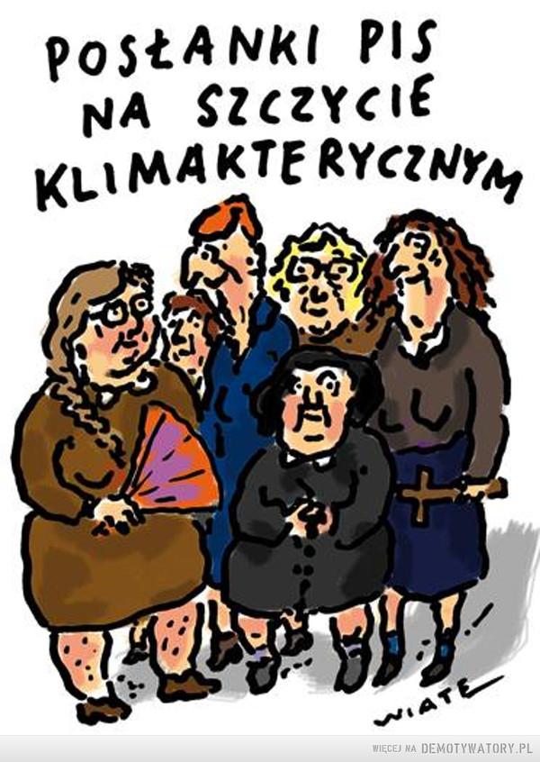 Posłanki PiS na szczycie klimakterycznym –
