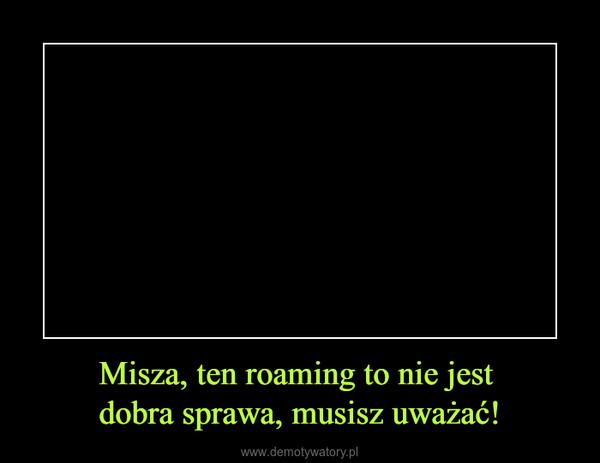 Misza, ten roaming to nie jest dobra sprawa, musisz uważać! –