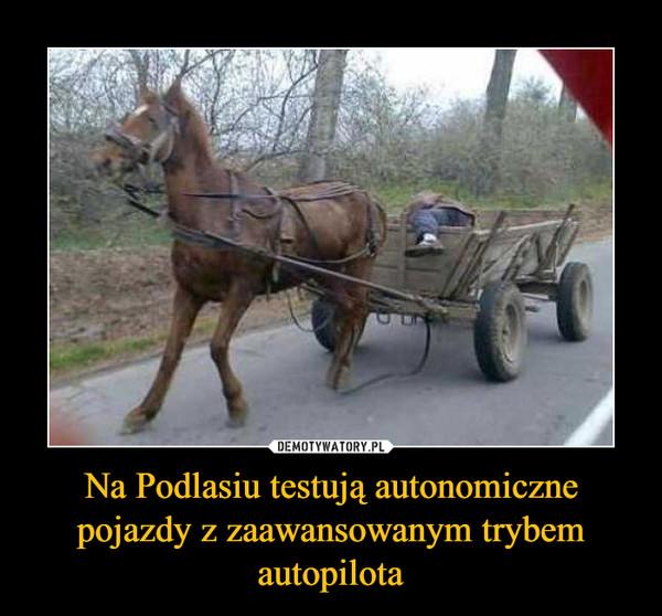 Na Podlasiu testują autonomiczne pojazdy z zaawansowanym trybem autopilota –
