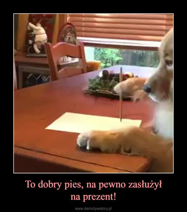 To dobry pies, na pewno zasłużyłna prezent! –