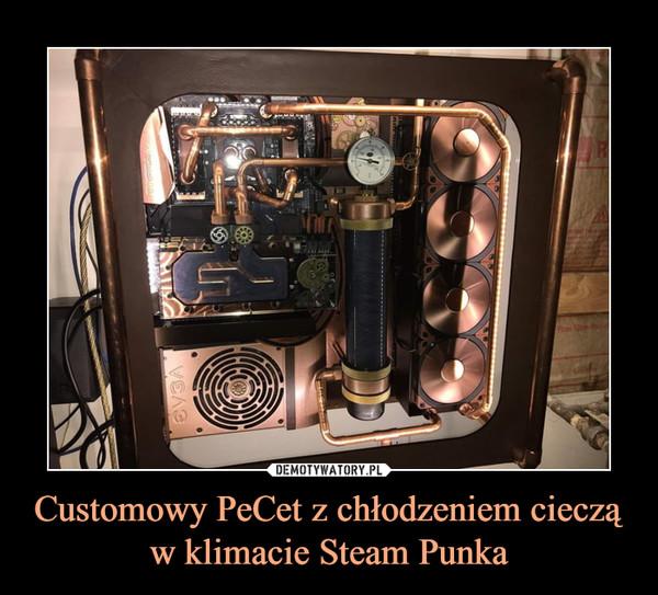 Customowy PeCet z chłodzeniem cieczą w klimacie Steam Punka –