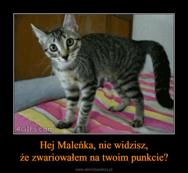 Hej Maleńka, nie widzisz,że zwariowałem na twoim punkcie? –