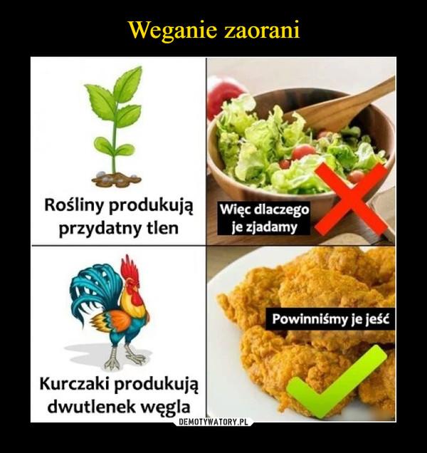 –  Rośliny produkująprzydatny tlenWięc dlaczegoje zjadamyPowinniśmy je jeśćKurczaki produkujądwutlenek węgla