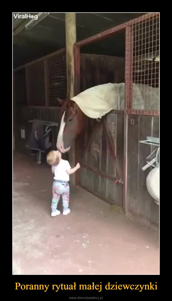 Poranny rytuał małej dziewczynki –