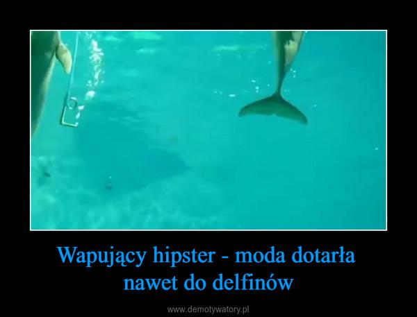 Wapujący hipster - moda dotarła nawet do delfinów –