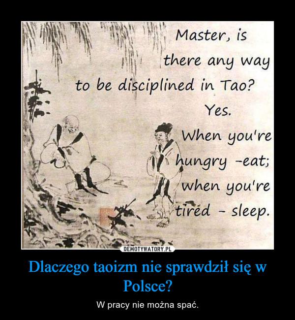 Dlaczego taoizm nie sprawdził się w Polsce? – W pracy nie można spać.