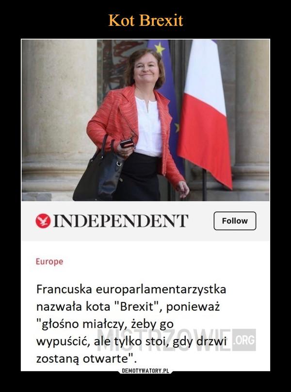 """–  INDEPENDENT Europe Francuska europarlamentarzystka nazwała kota """"Brexit"""", ponieważ """"głośno miałczy, żeby go .ORG wypuścić, ale tylko stoi, gdy drzwi zostaną otwarte"""""""