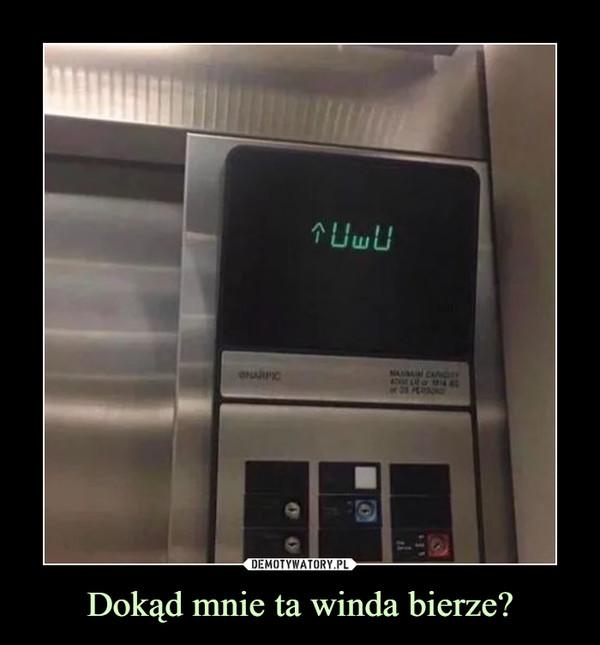 Dokąd mnie ta winda bierze? –
