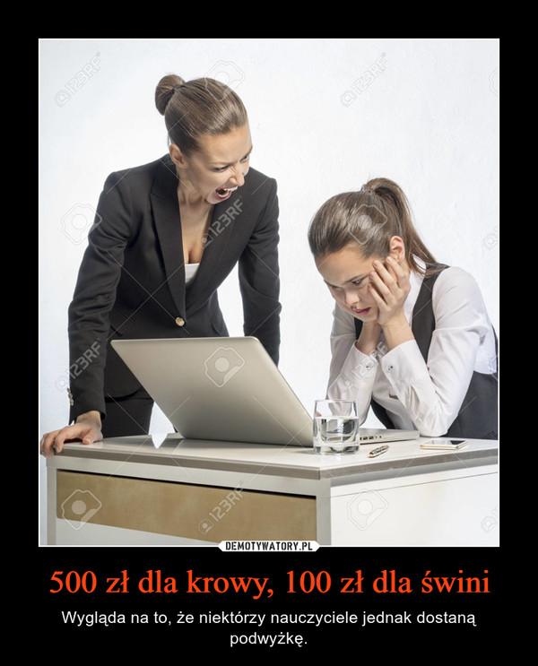 500 zł dla krowy, 100 zł dla świni – Wygląda na to, że niektórzy nauczyciele jednak dostaną podwyżkę.
