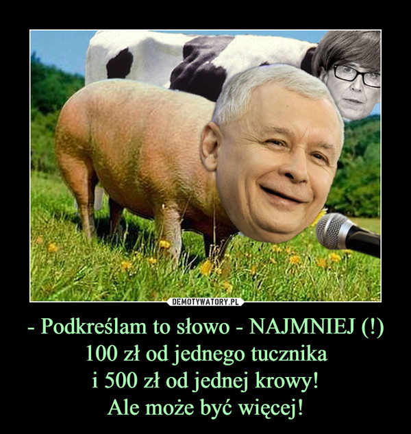 - Podkreślam to słowo - NAJMNIEJ (!)100 zł od jednego tucznikai 500 zł od jednej krowy!Ale może być więcej! –