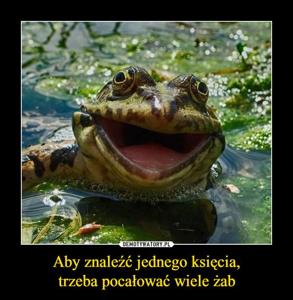 Aby znaleźć jednego księcia,trzeba pocałować wiele żab –