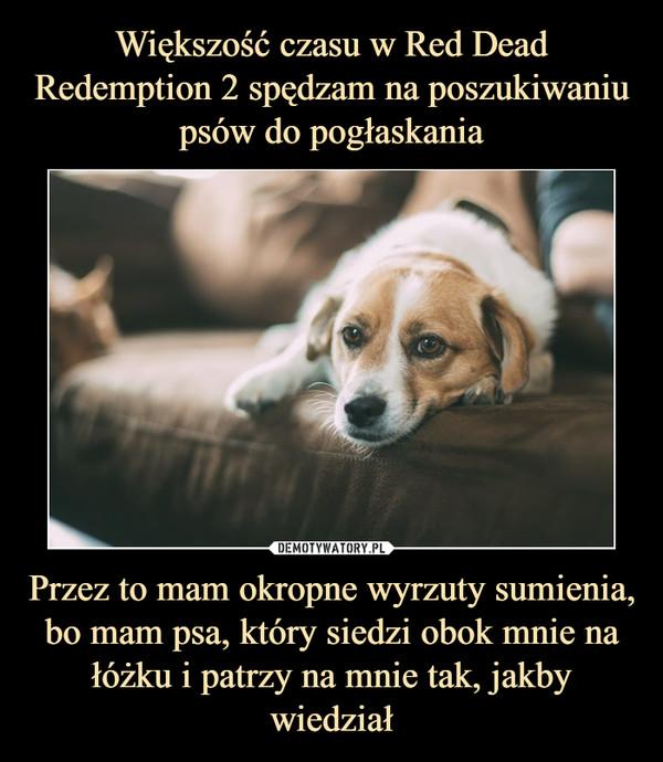 Przez to mam okropne wyrzuty sumienia, bo mam psa, który siedzi obok mnie na łóżku i patrzy na mnie tak, jakby wiedział –