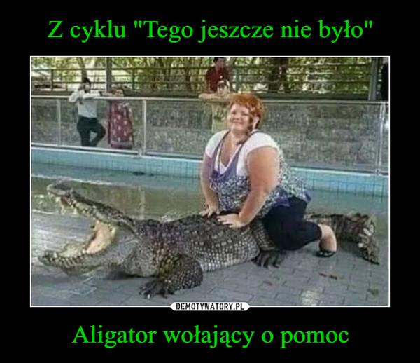 Aligator wołający o pomoc –