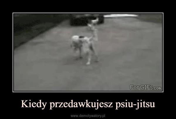 Kiedy przedawkujesz psiu-jitsu –