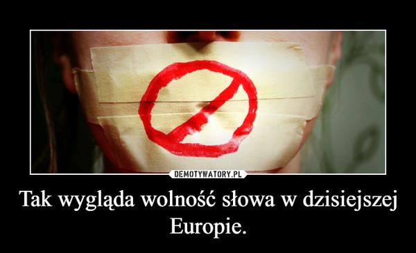 Tak wygląda wolność słowa w dzisiejszej Europie. –