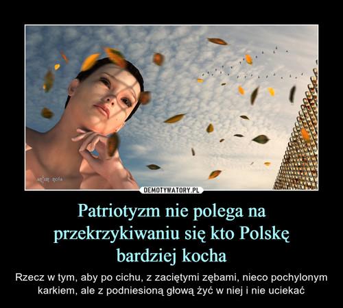 Patriotyzm nie polega na przekrzykiwaniu się kto Polskę bardziej kocha