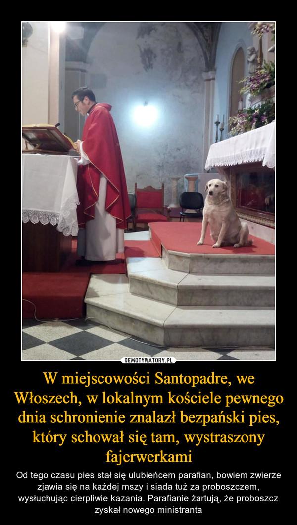 W miejscowości Santopadre, we Włoszech, w lokalnym kościele pewnego dnia schronienie znalazł bezpański pies, który schował się tam, wystraszony fajerwerkami – Od tego czasu pies stał się ulubieńcem parafian, bowiem zwierze zjawia się na każdej mszy i siada tuż za proboszczem, wysłuchując cierpliwie kazania. Parafianie żartują, że proboszcz zyskał nowego ministranta