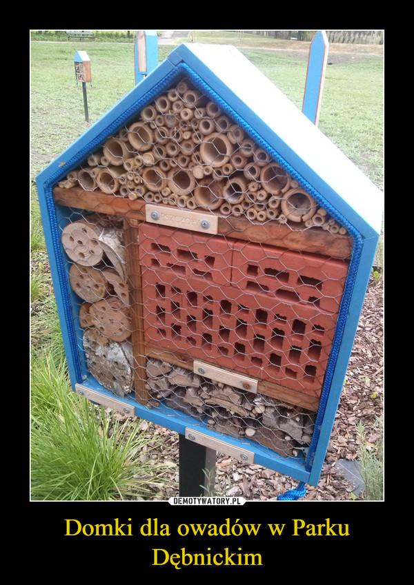 Domki dla owadów w Parku Dębnickim –