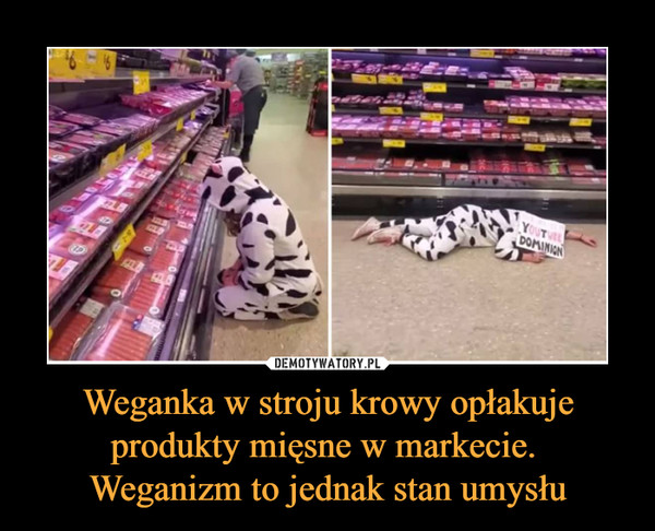 Weganka w stroju krowy opłakuje produkty mięsne w markecie. Weganizm to jednak stan umysłu –