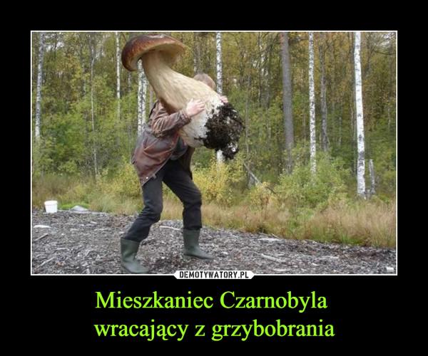 Mieszkaniec Czarnobyla wracający z grzybobrania –