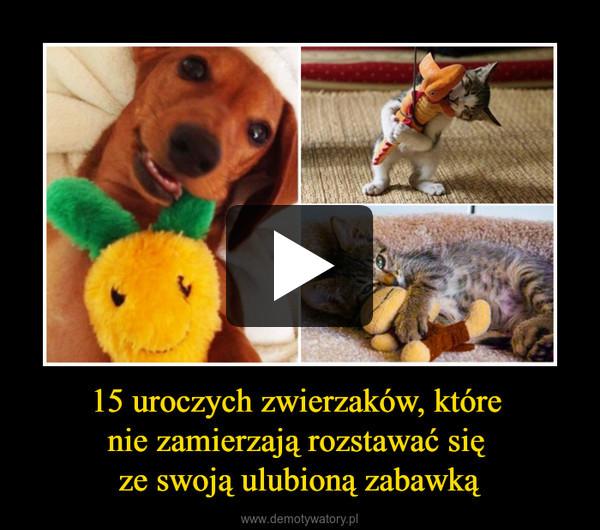 15 uroczych zwierzaków, które nie zamierzają rozstawać się ze swoją ulubioną zabawką –