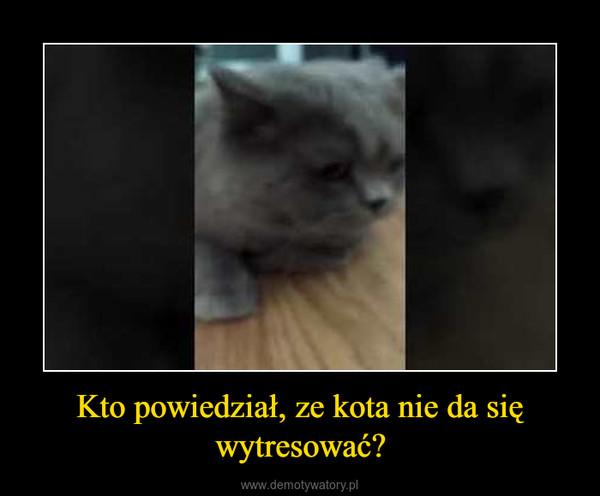 Kto powiedział, ze kota nie da się wytresować? –