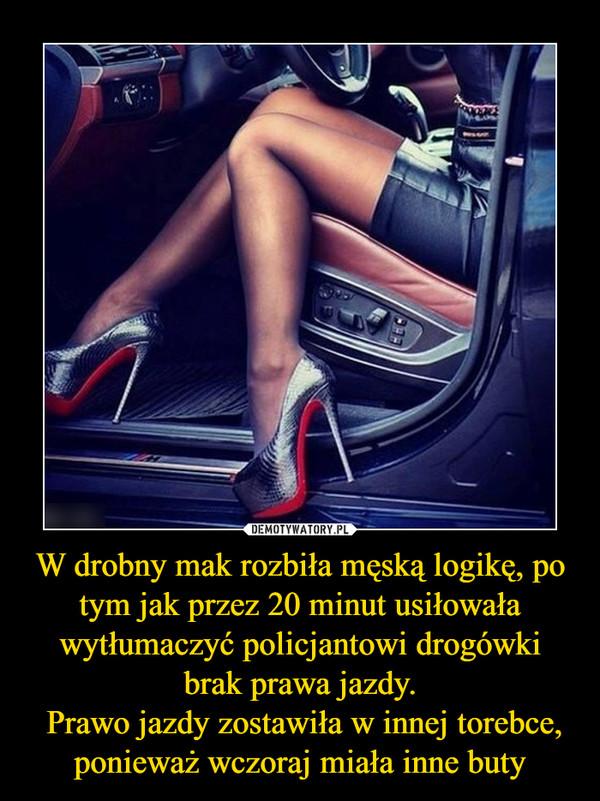 W drobny mak rozbiła męską logikę, po tym jak przez 20 minut usiłowała wytłumaczyć policjantowi drogówki brak prawa jazdy. Prawo jazdy zostawiła w innej torebce, ponieważ wczoraj miała inne buty –