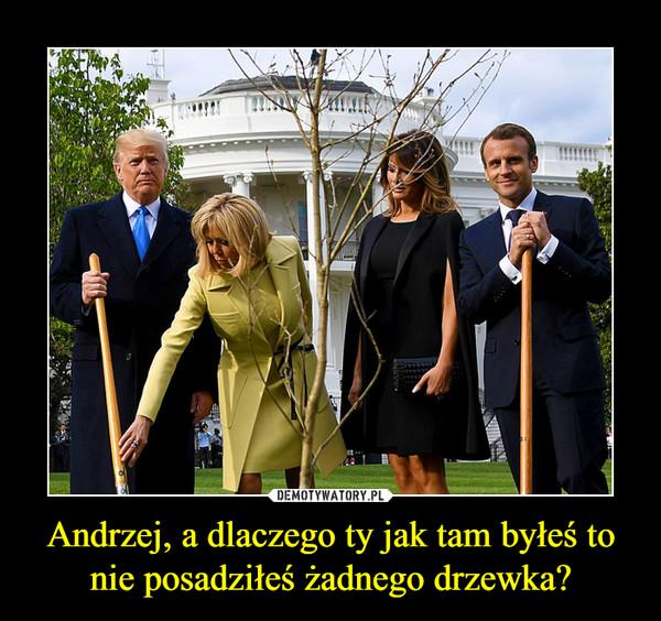 Andrzej, a dlaczego ty jak tam byłeś to nie posadziłeś żadnego drzewka? –