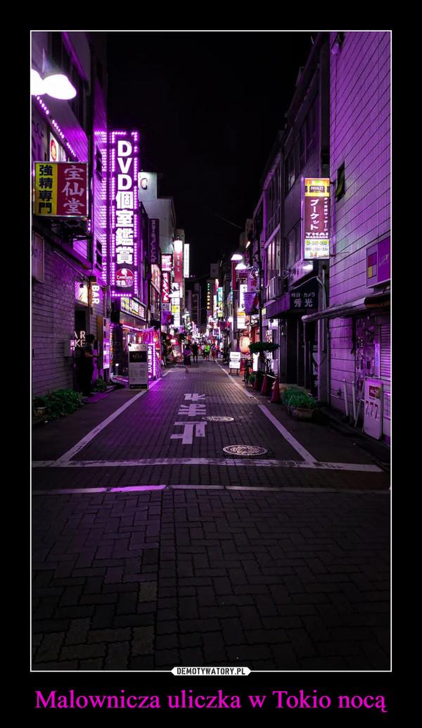 Malownicza uliczka w Tokio nocą –
