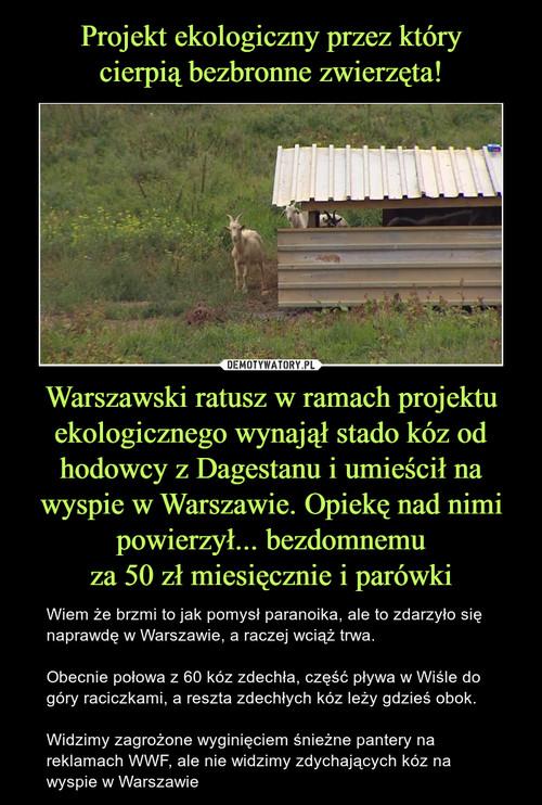 Projekt ekologiczny przez który cierpią bezbronne zwierzęta! Warszawski ratusz w ramach projektu ekologicznego wynajął stado kóz od hodowcy z Dagestanu i umieścił na wyspie w Warszawie. Opiekę nad nimi powierzył... bezdomnemu za 50 zł miesięcznie i parówki