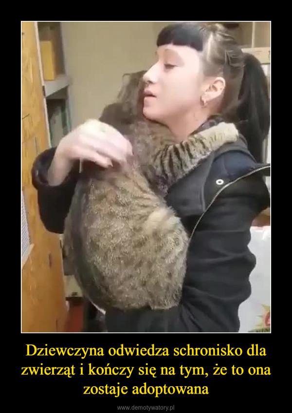 Dziewczyna odwiedza schronisko dla zwierząt i kończy się na tym, że to ona zostaje adoptowana –