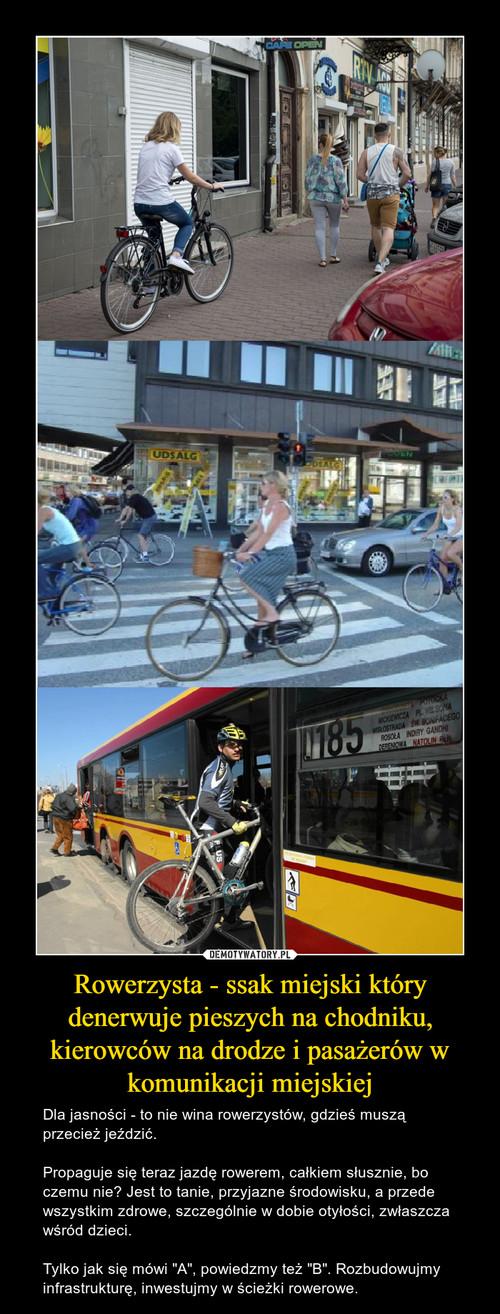 Rowerzysta - ssak miejski który denerwuje pieszych na chodniku, kierowców na drodze i pasażerów w komunikacji miejskiej